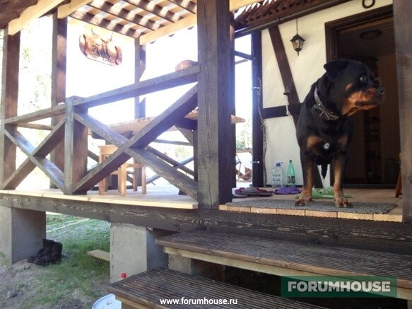 rottweiler egy rétegben)